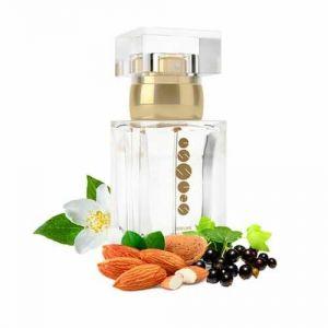 Dámský parfém ESSENS w151 - 50 ml