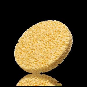 Čisticí houbička